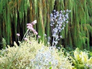 Hidcote - Gardens to Visit