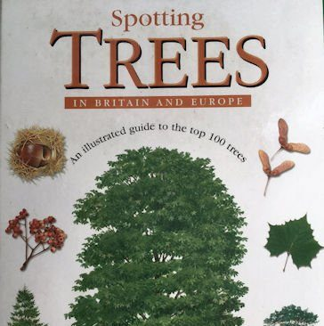 Spotting Trees in Great Britain & Europe