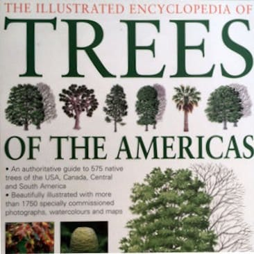 Trees of the Americas