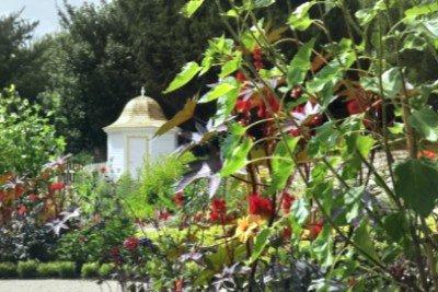 restoring the mount vernon garden