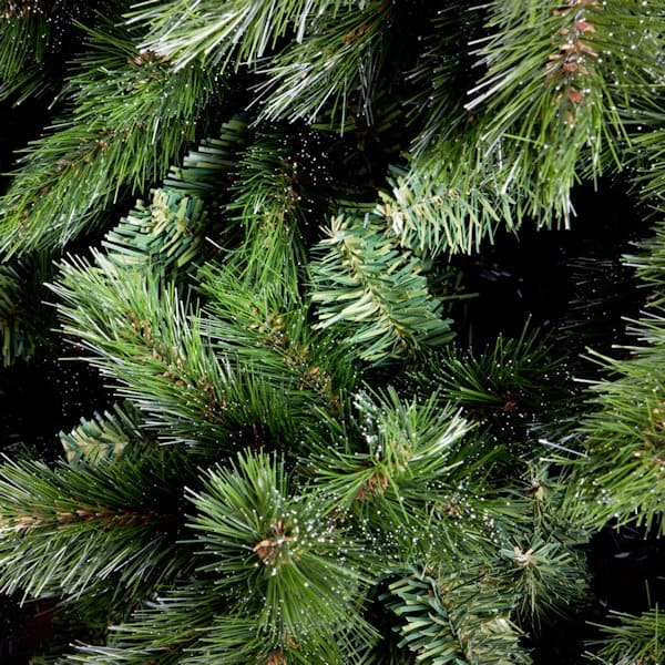 green branches of a fir-tree, coniferous vegetation