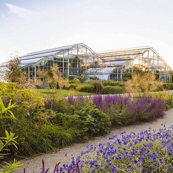 Rhs Garden Wisley Gardens To Visit 2020