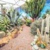 Lullingstone Castle & World Garden